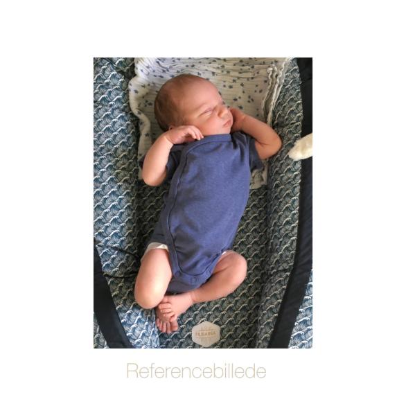 Personlig fødselsplakat - referencebillede